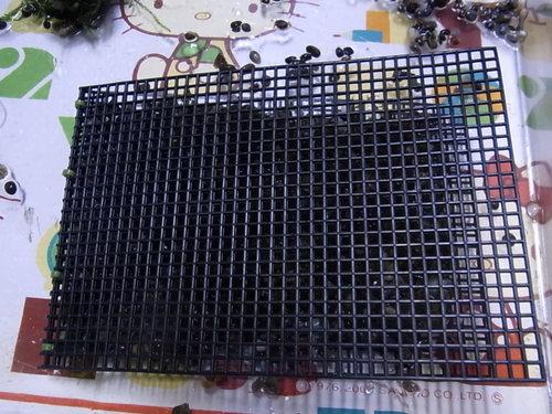 Rimg0356